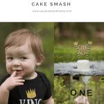 Wild One Cake Smash First Birthday Cake Smash