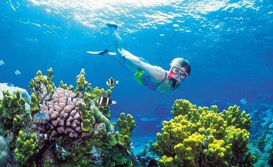 The-Great-Barrier-Reef-In-Australia