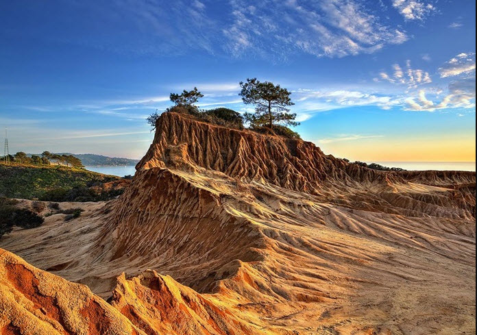 Torrey Pines State Reserve San Diego