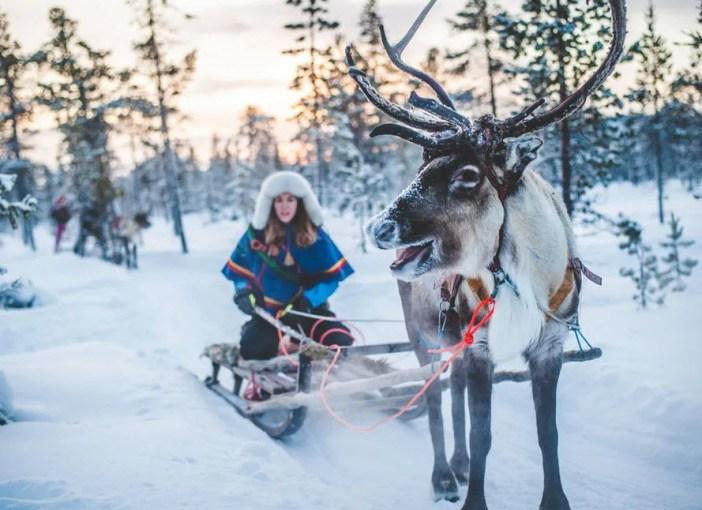 Scandinavian Adventure on Sled - Best Adventure Trips for Families