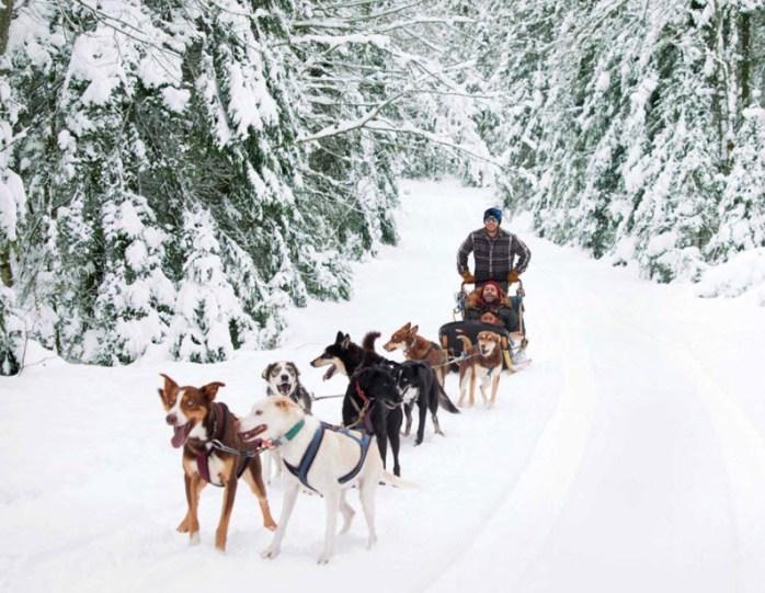 Sledding in Vermont