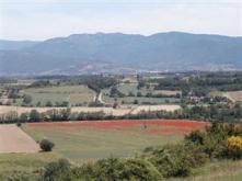 View Arezzo Vacation Apartments Flats in Tuscany Italy