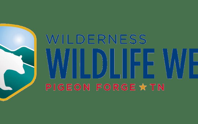 Wilderness Wildlife Week For 2021