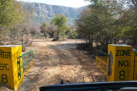 Ranthambore zone 8 entry gate