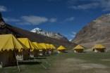 Dorjee Camps