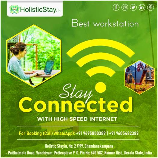 HolisticStay...perfect place to work in wilderness