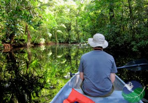 where to go in costa rica for nature paddle boat