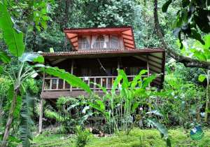 Samasati Nature Retreat Exterior