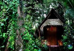 Shawandha Lodge Bungalow