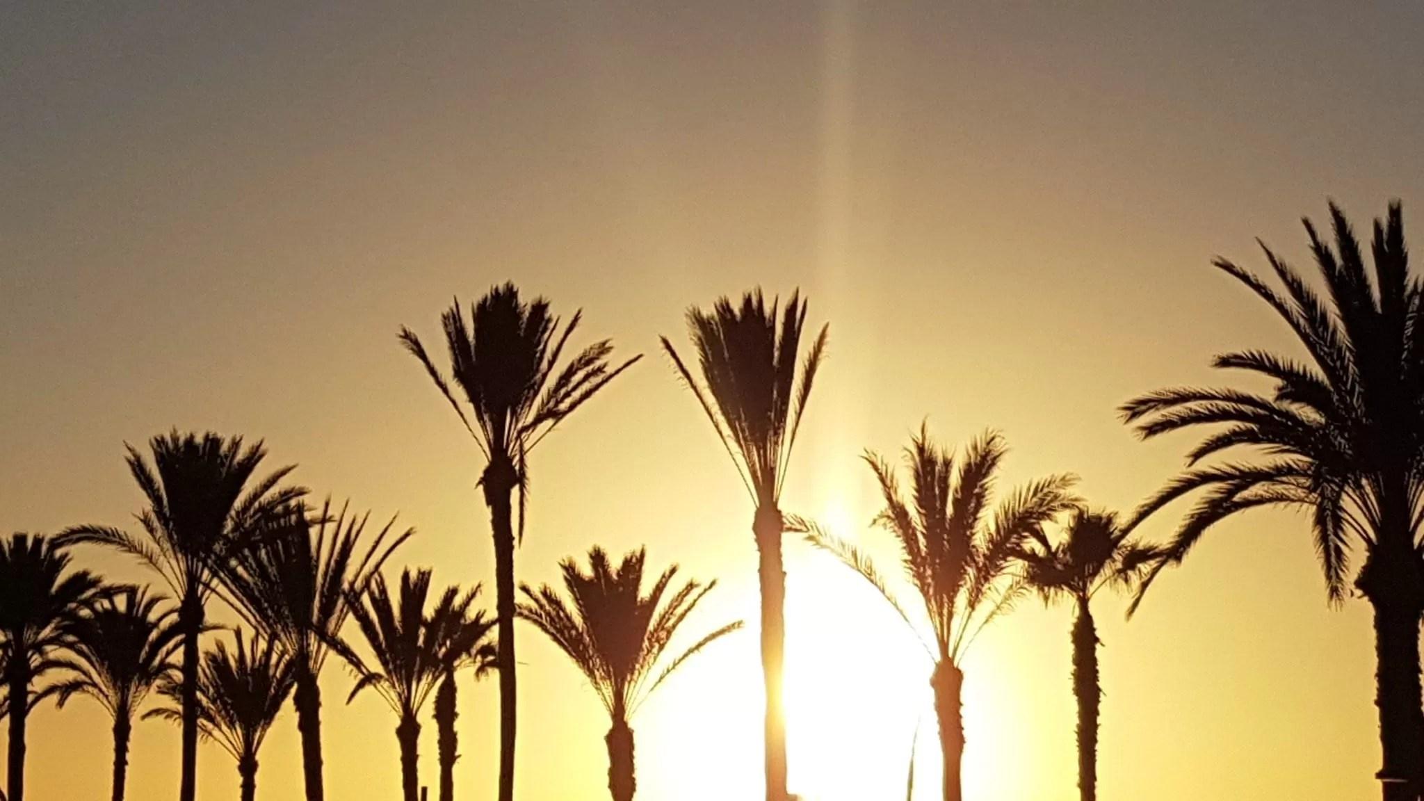 sunset at playa de las americas, tenerife