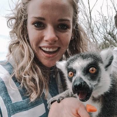 Girl feeding lemur in Australia
