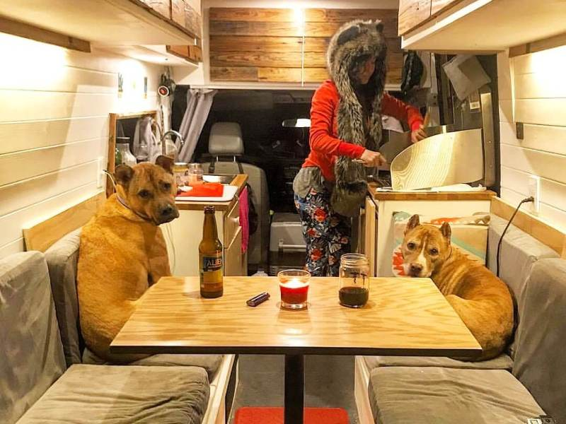 girl in spirithood with dogs cooking in camper van