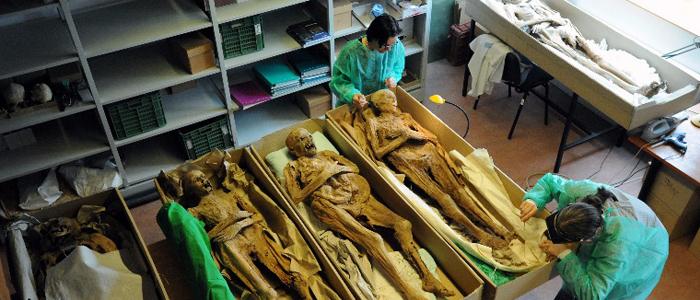 váci múmiák vizsgálata-700