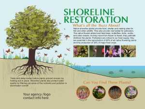 Shoreline Restoration Interpretive Sign