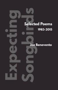 Joe Benevento | Expecting Songbirds