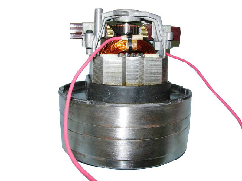 Lamb Electric Motor