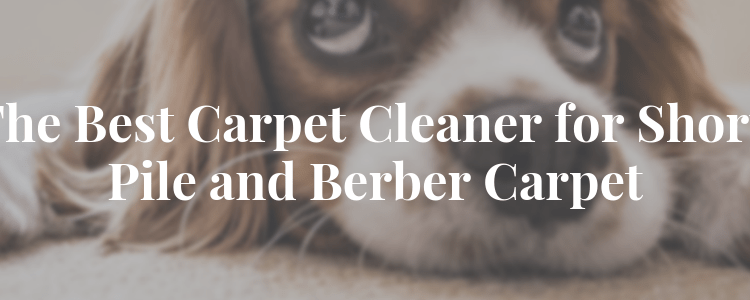 The Best Carpet Cleaner for Short Pile and Berber Carpet, comparison, Vacuum Fanatics