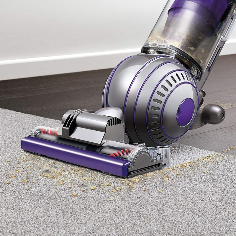 Dyson Upright Vacuum Ball Animal 2