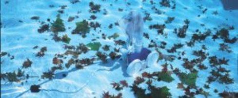 Polaris Vac-Sweep 280 Pressure Side Pool