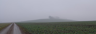 Novembergrått i Rönneberga