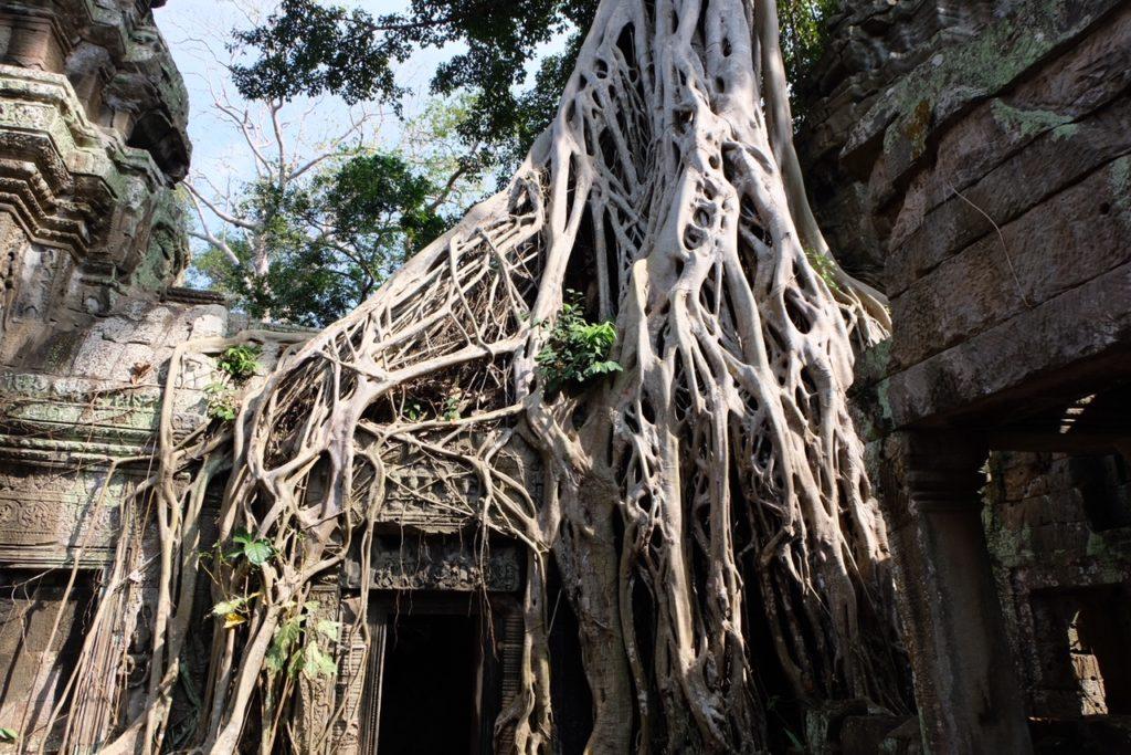 Informations d'Angkor