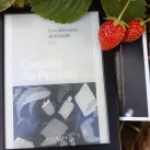 vagabondageautourdesoi.com Camile de Peretti -