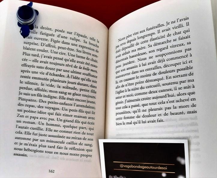 vagabondageautourdesoi.com Grégoire Delacourt