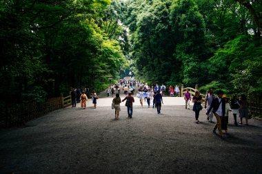 Vagabondays-Tokyo-Walks-54