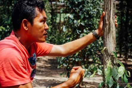 vagabondays-kampot-cambodia-45