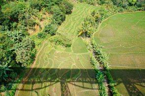 Vagabondays-Java-Indonesia-2