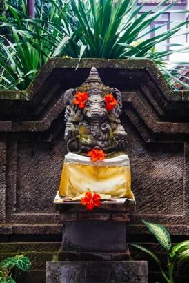 Vagabondays-Ubud-Bali-Indonesia-19