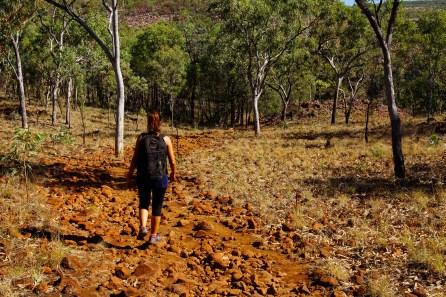vagabondays-australia-gibb-river-road-108