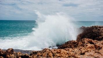 vagabondays-shark-bay-australia-6