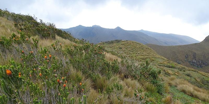 Itinéraire en équateur pinchincha