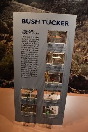 Ett tips är att besöka Wadlata Outback Center i Port Augusta innan du åker på din outback-tur