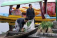 Dal is the life line for many Kashmiris in Srinagar. Here vegetables are transported in Shikaras (small boats)