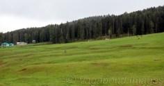 यहां दूर तक फैले ढलान सोनमर्ग व गुलमर्ग को टक्कर देते हैं