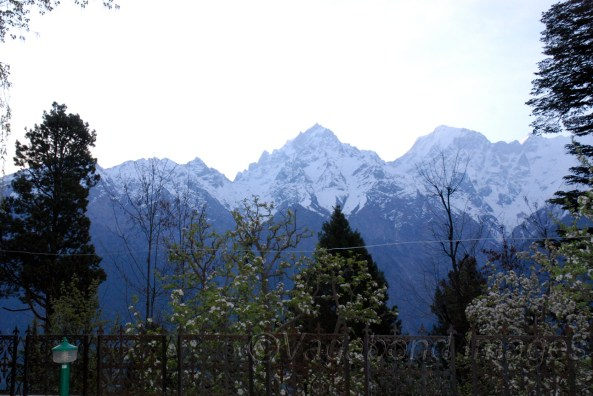 View of Kinner Kailash from Kalpa