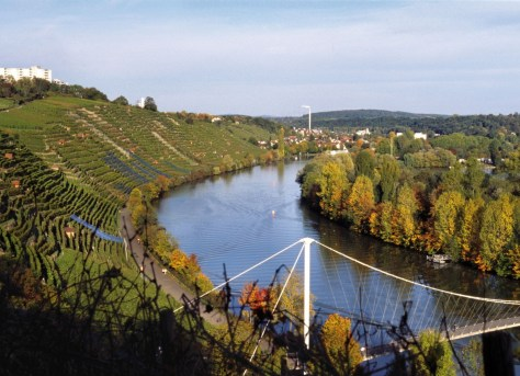 vineyards of stuttgart