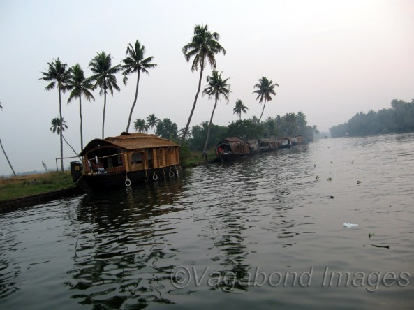 Backwaters of Aleppy in Kerala