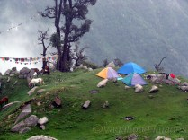 Trekkers camping at Triund.