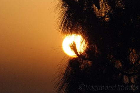 Kausani-Sunrise12
