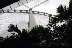 Singapore Flyer17