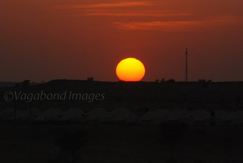 Sunset at Thar10
