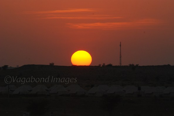 Sunset at Thar11