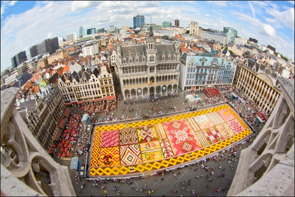 Flower Carpet 2012. Photo: Eric Danhier