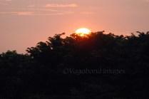 Prambanan Sunset19