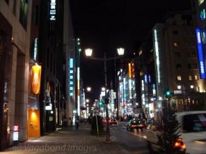 Night in Tokyo6