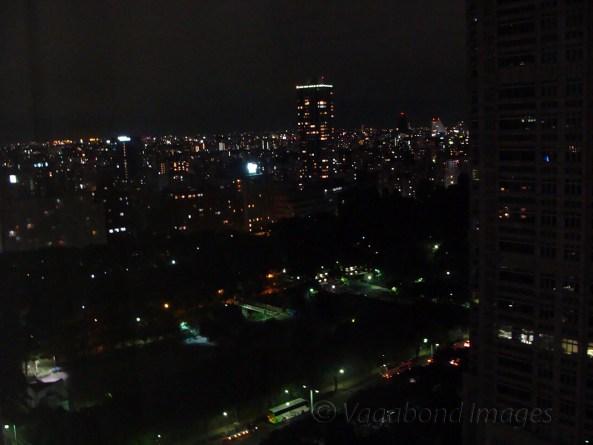 Night in Tokyo1