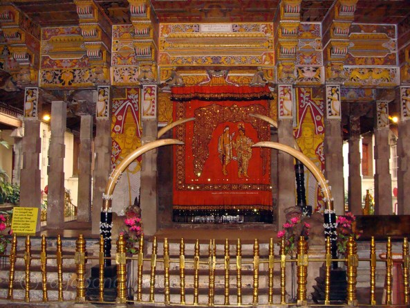 Tooth Relic5